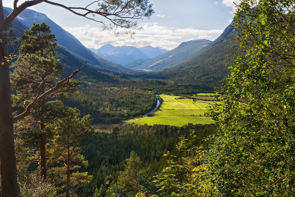 Forests and emerald-green fields aplenty.
