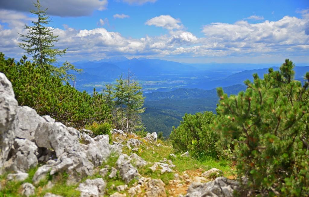 View from Pokljuka mountain