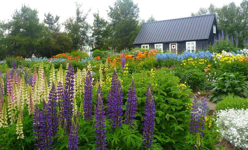 Akureyri Botanical Garden