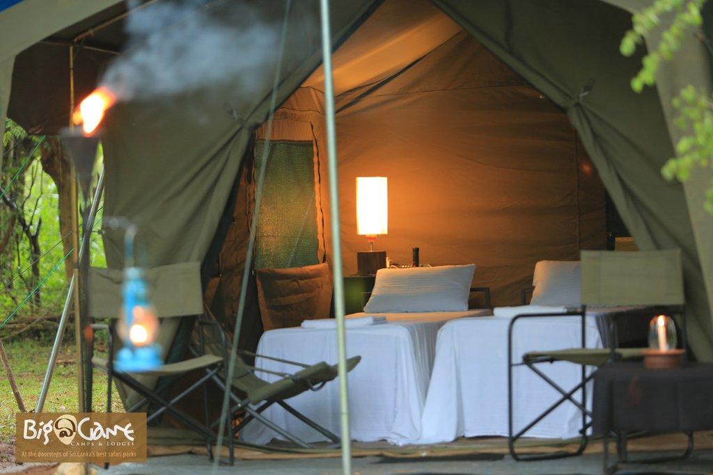 Big Game Safari Campsite