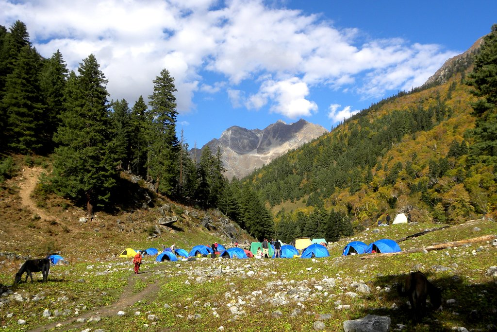 Camping at Lekh Dinga surrounded by thick forests