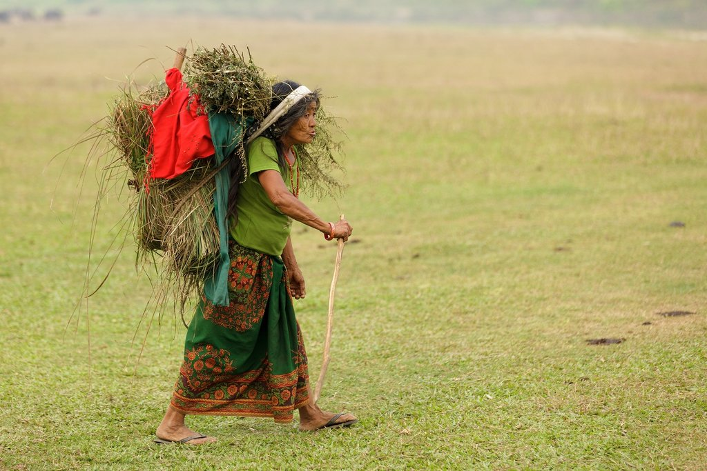Woman carrying grass in the Terai