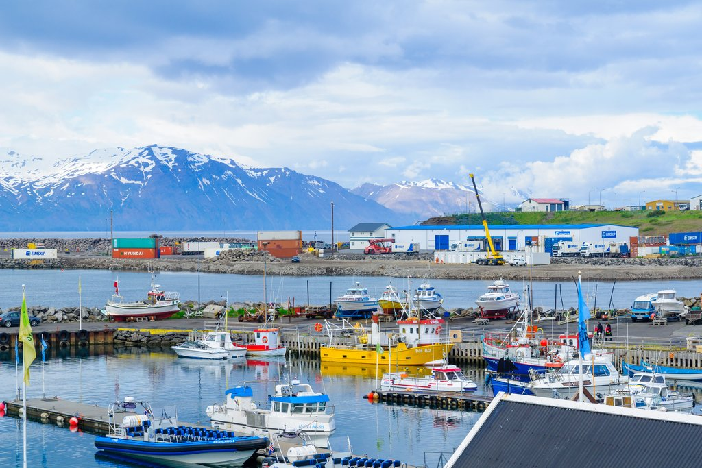 The harbor at Husavik, Iceland's whale watching capital