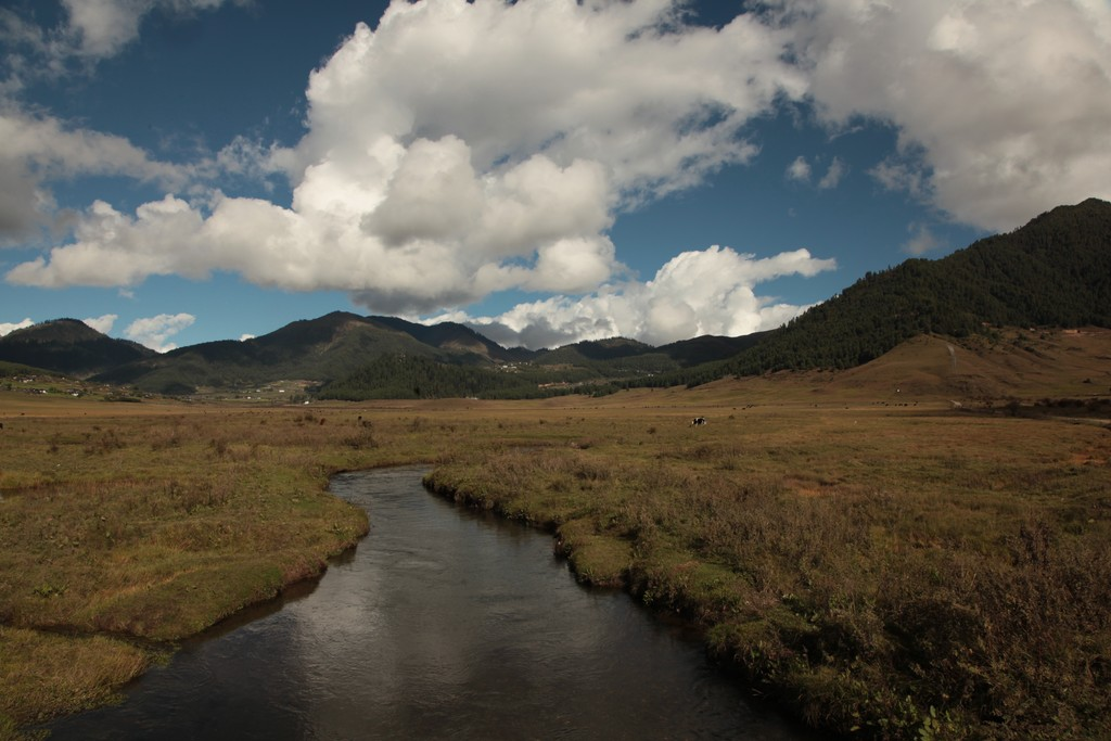 The peaceful marshlands of Phobjikha Valley