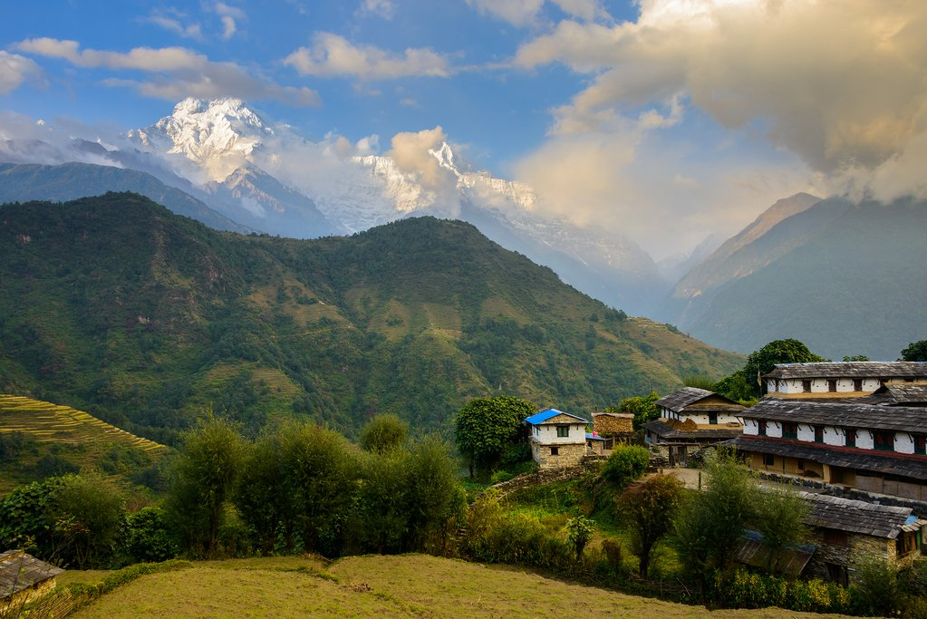 The village of Ghandruk surrounded by paddy fields