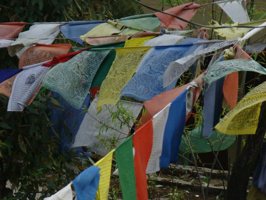 Dharamsala is home to the Tibetan government in exile