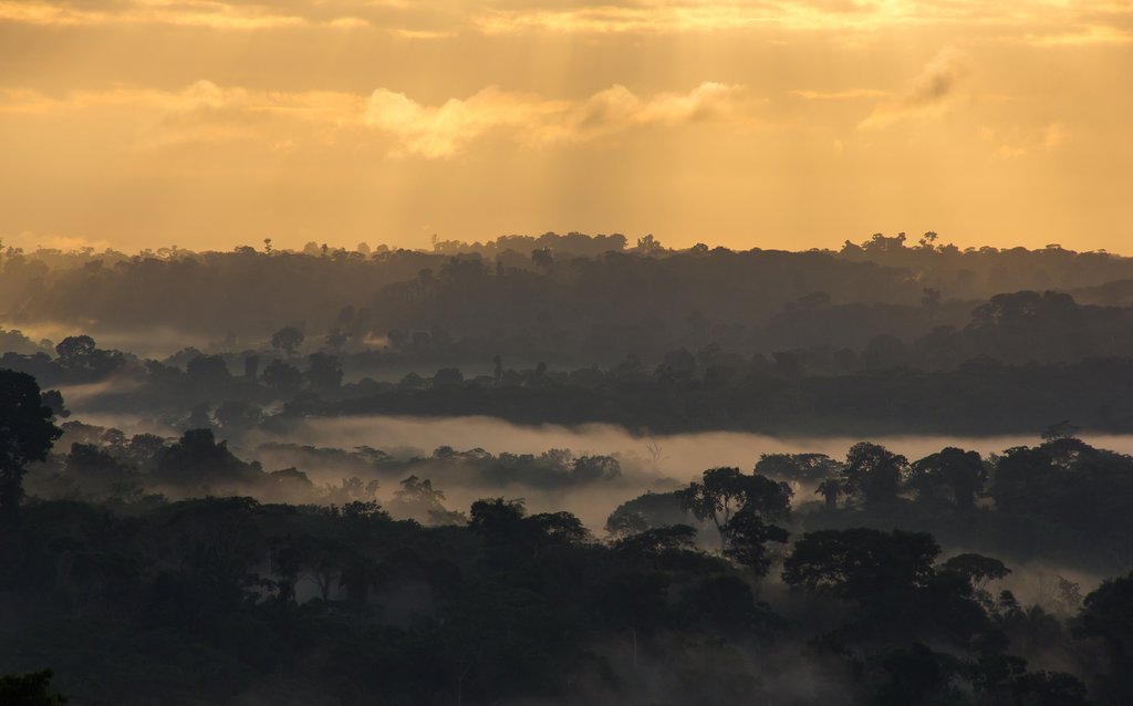 Sunrise over the Amazon