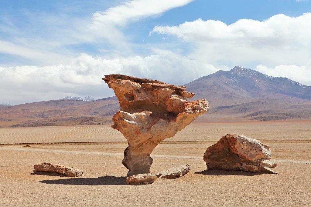 Bolivia Dali Desert