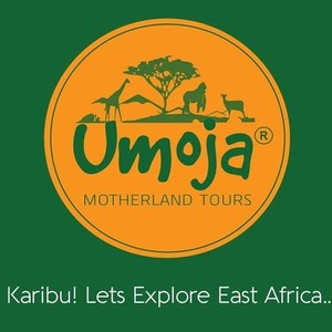 Company Logo for Umoja Motherland Tours