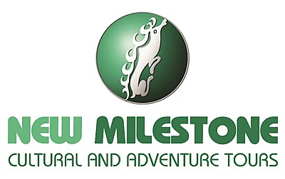 Company Logo for New Milestone Tours