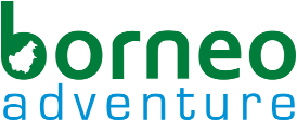 Company Logo for Borneo Adventure