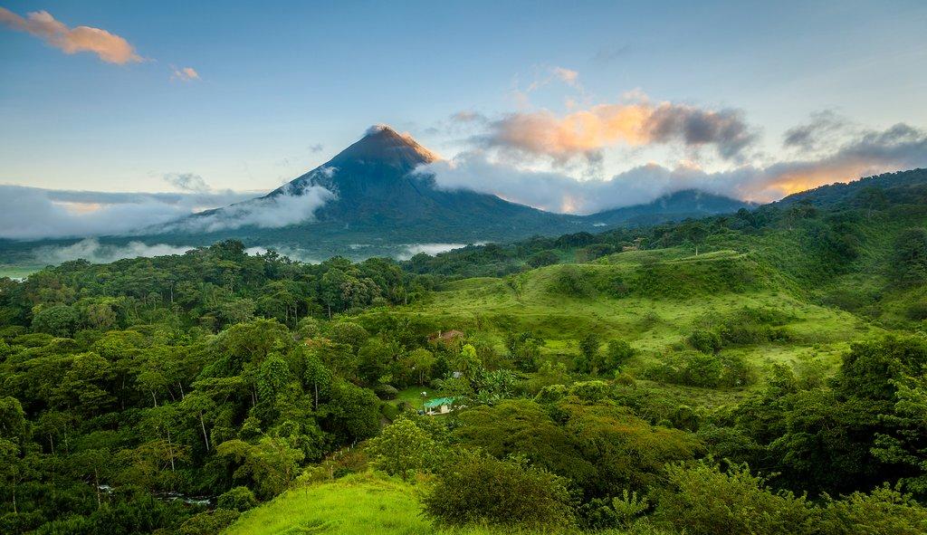 """Coffee"" the golden grain of Costa Rica"