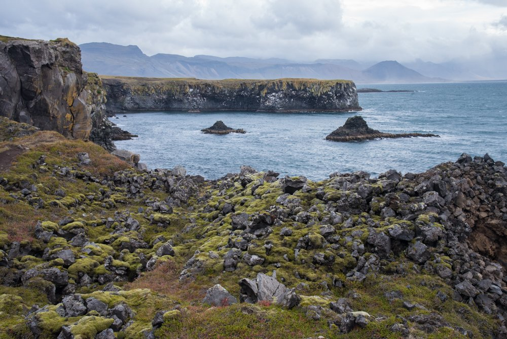 Moss-covered lava fields on the cliff walk between Arnarstapi and Hellnar (photo by Chris McCarty)