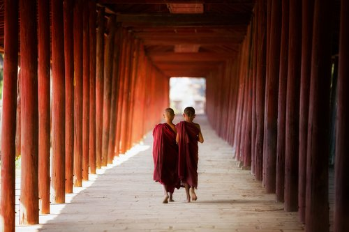 Young novice monks