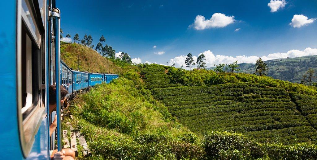A train overlooks tea estates on the way to Nuwara Eliya.
