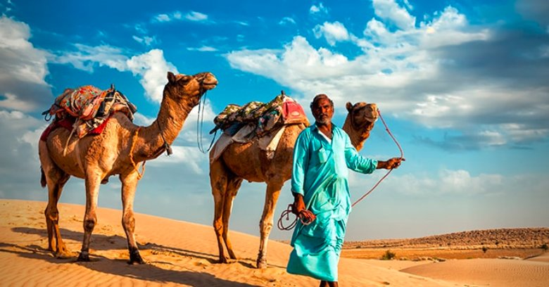 Meet the camel herders of the Thar Desert.