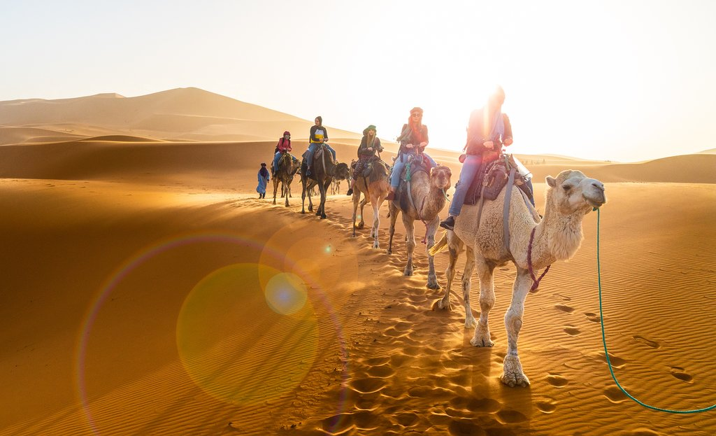 Caravan on camelback across the Sahara desert