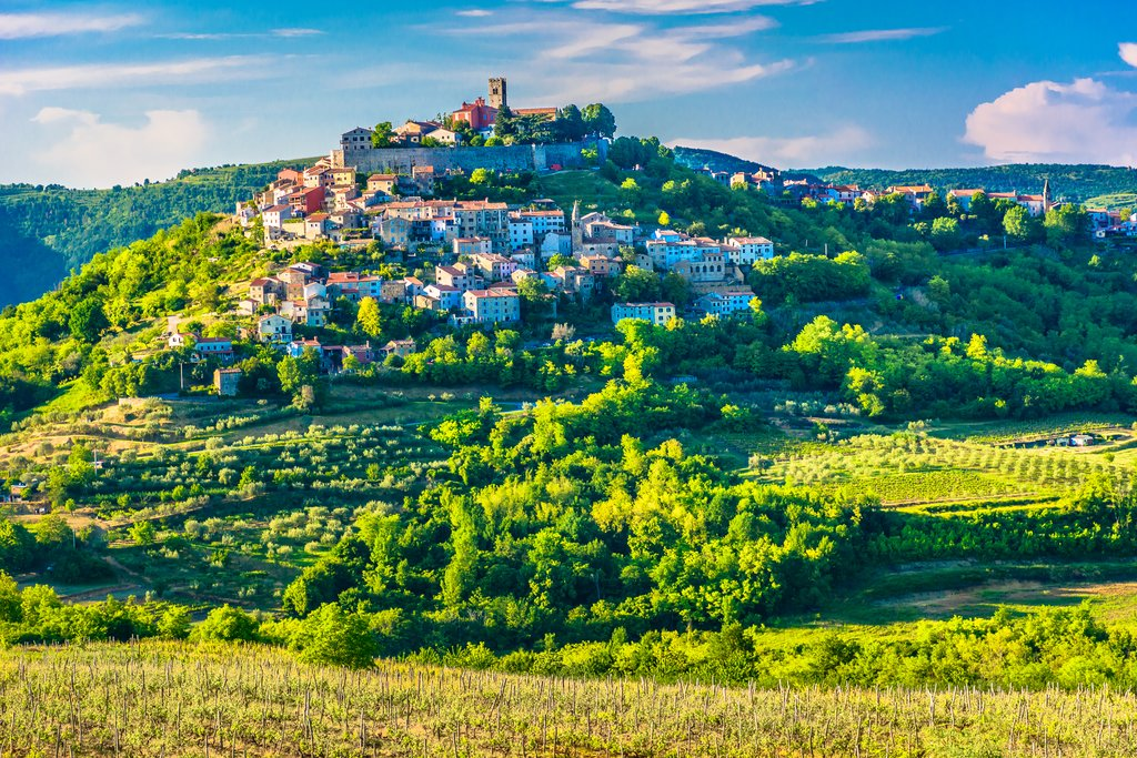 The famous hilltop town of Motovun in Croatia's Istria region