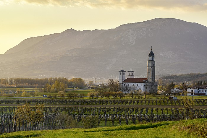 A spring sunset in Slovenia's wine country