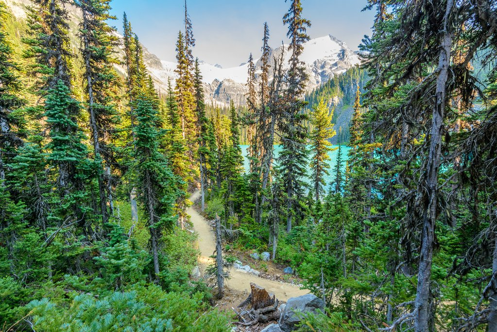 North of Whistler, Joffre Lakes Trail leads to 3 brilliant blue lakes