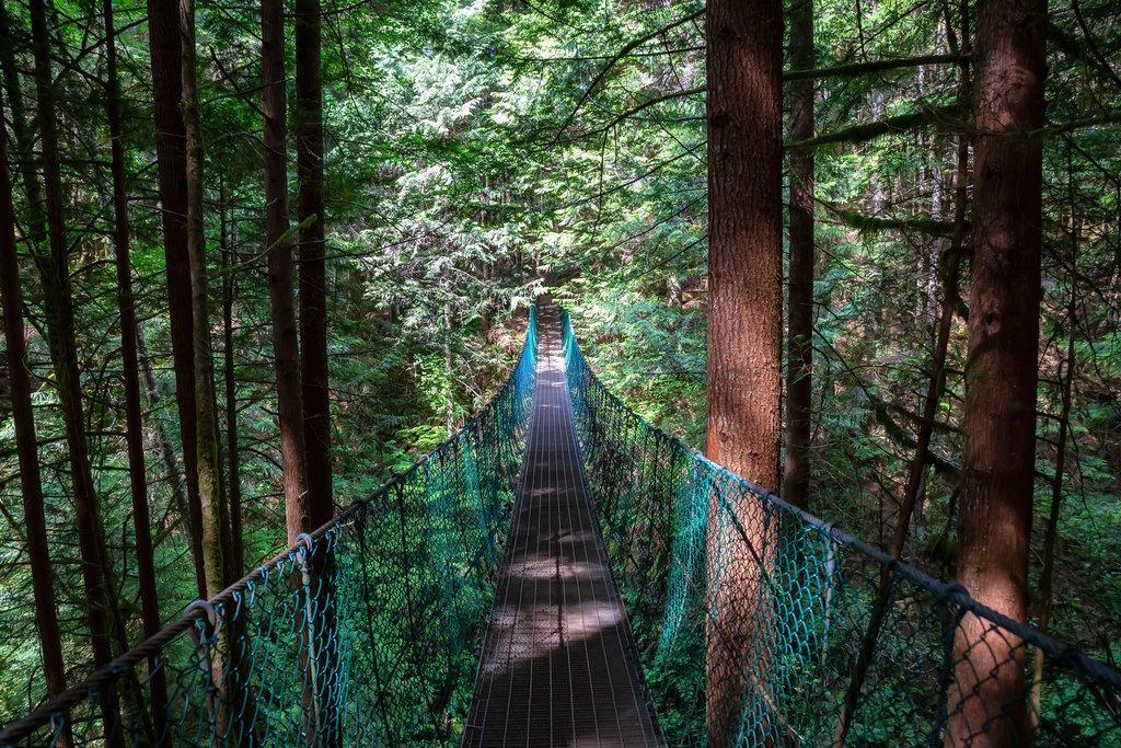 Suspension bridge on the Juan de Fuca Trail near Mystic Beach