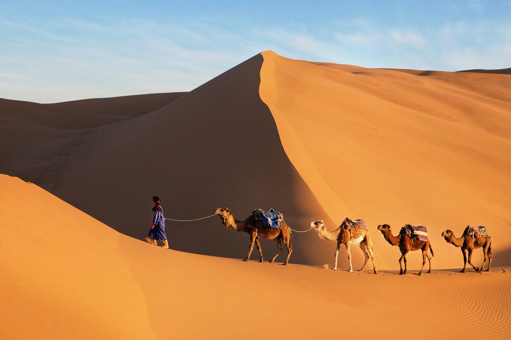 A camel caravan across the Sahara