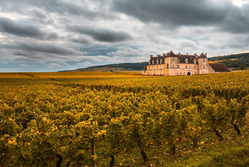 A château in Burgundy wine country