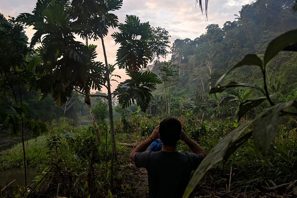 Explore Ecuador's Amazon Region