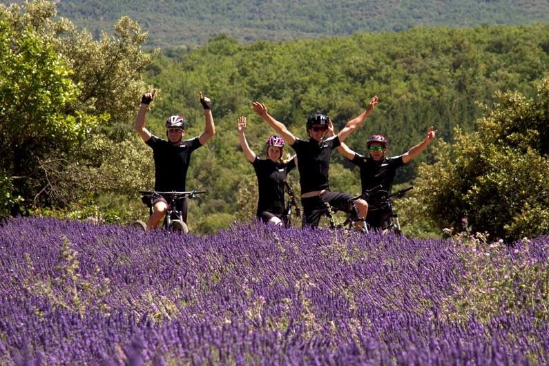 A July ride through lavender fields