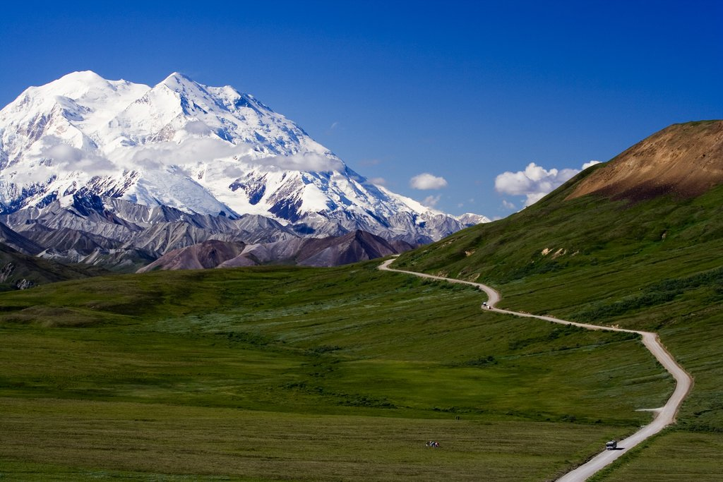 Discover Denali National Park