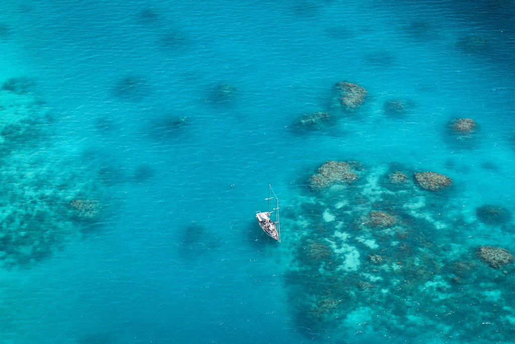 Explore the Great Barrier Reef on a full-day excursion
