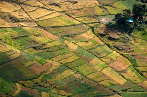 Colourful Simien Mountains