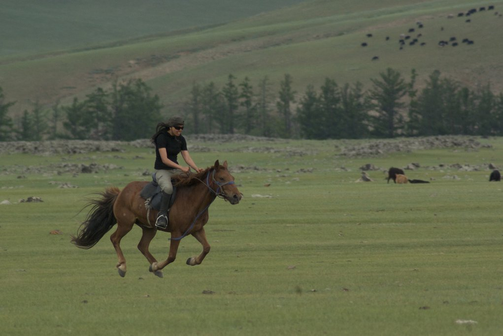 Horse trekking in Orkhon Valley