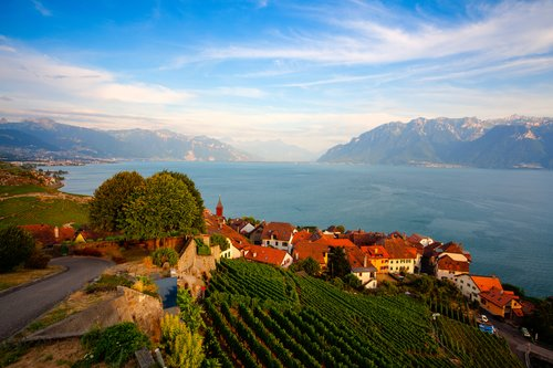 Vineyards of the Lavaux region by Lake Geneva