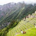 Peru Classic Tour with Jungle Trail - 15 Days
