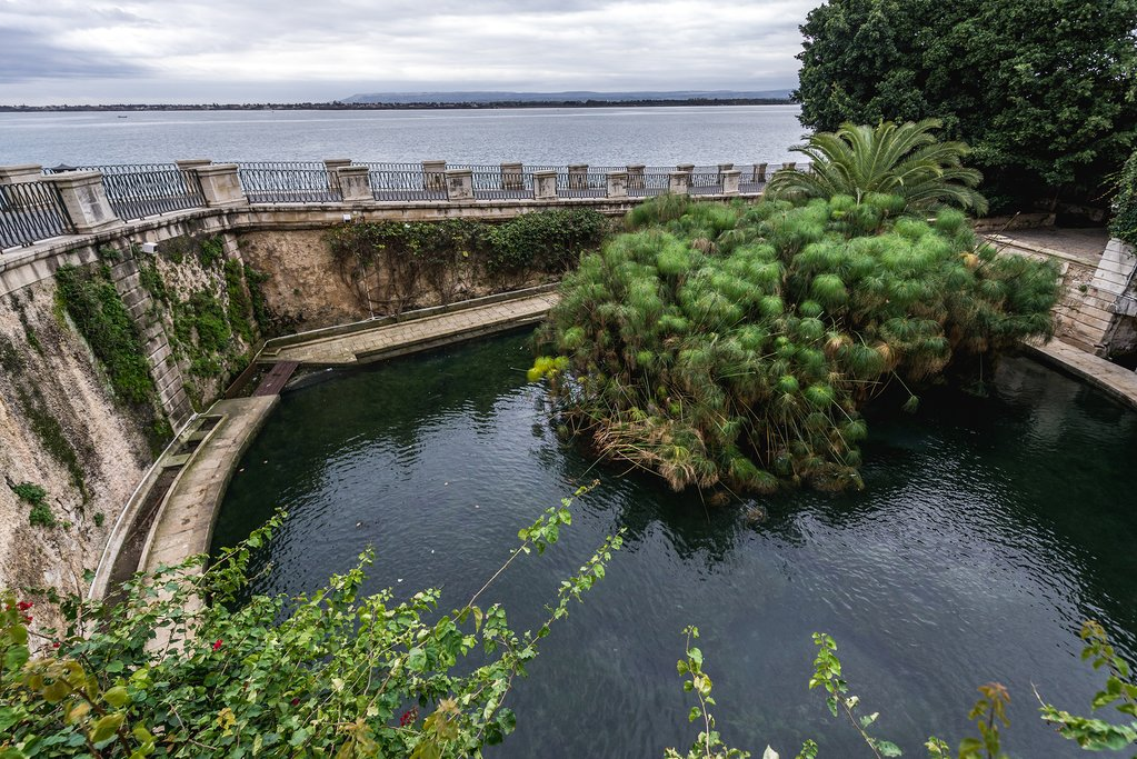 Head to Ortygia's Fonte Aretusa, a natural spring