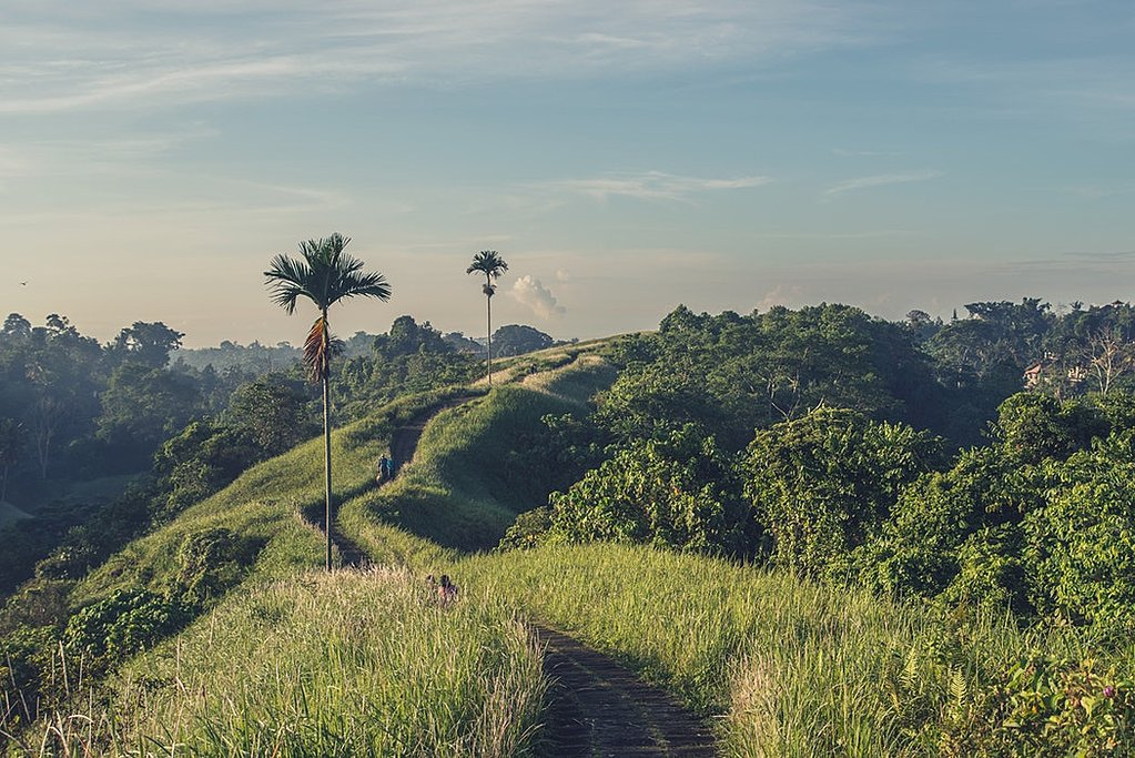 Tjampuhan Hill in Ubud