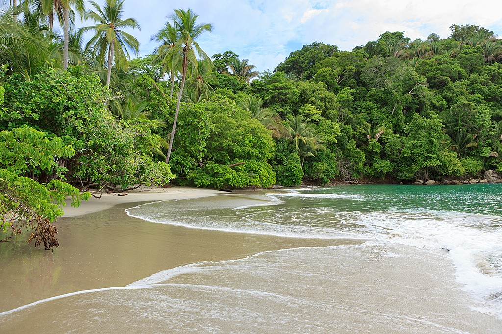 Palm-fringed coastline at Manuel Antonio National Park