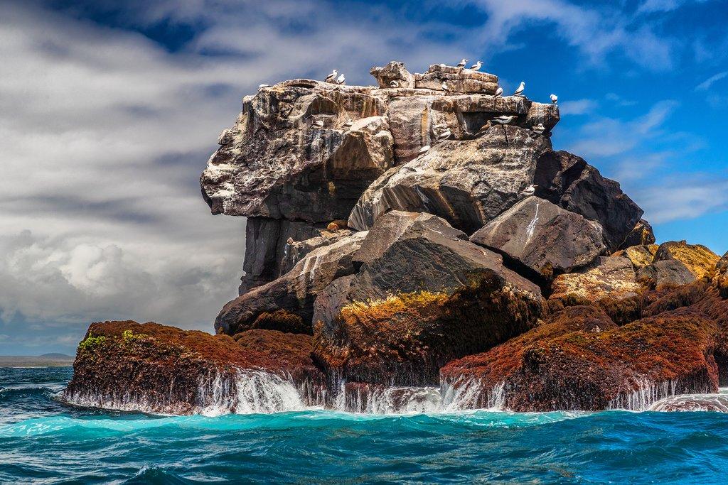 Nature on Galapagos Islands