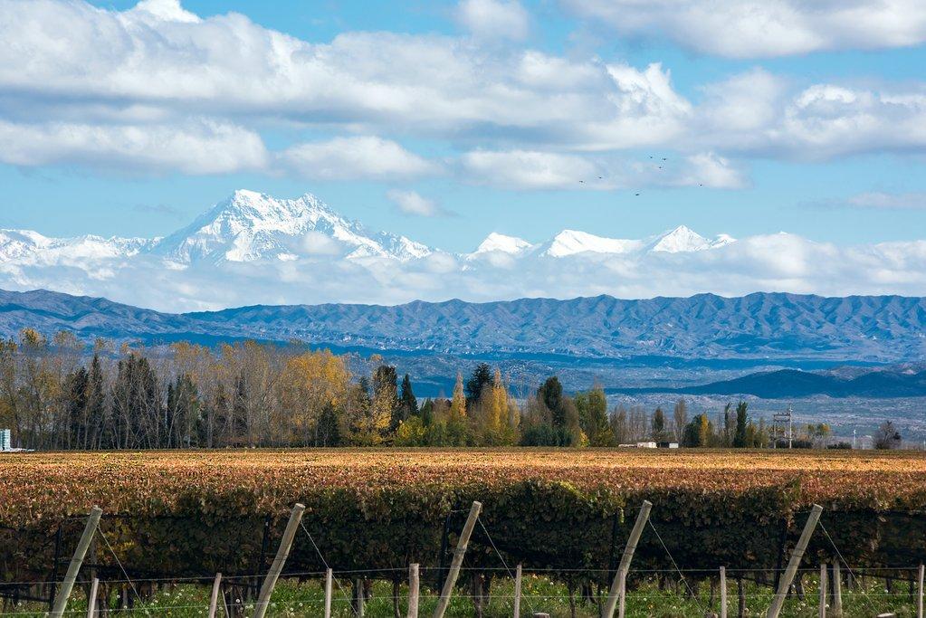 Discover Argentina with a kimkim-designed trip