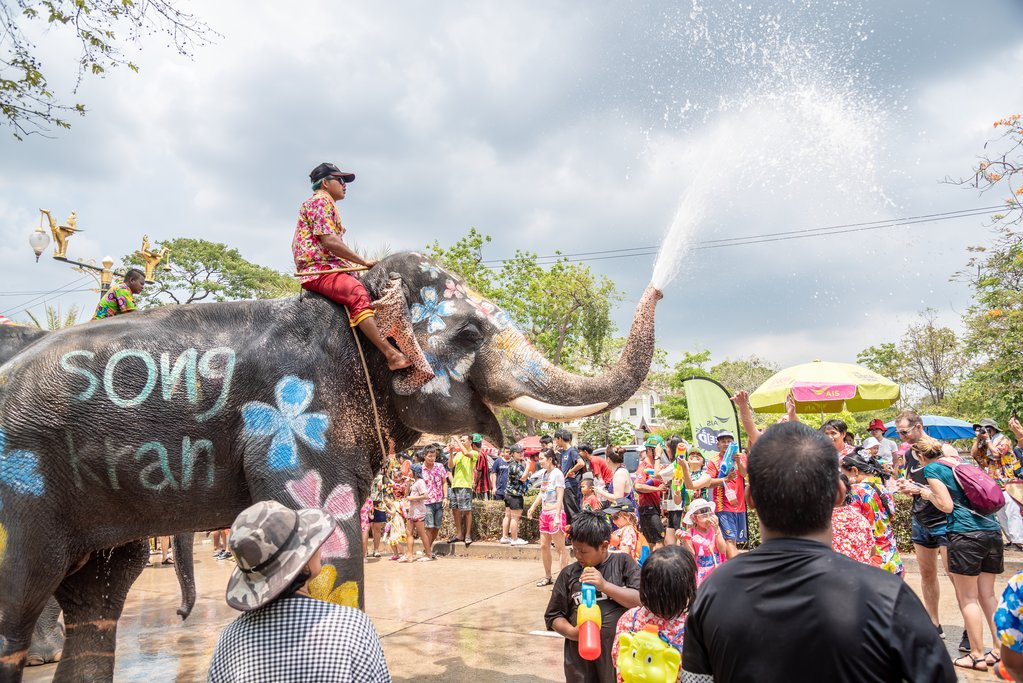 Ayuthaya, Thailand - April 15, 2019 : Elephant and peoples are splashing water in Songkran festival(water festival) in Ayuthaya, Thailand.