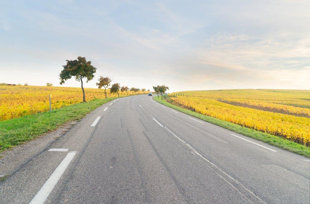 Route des Vin