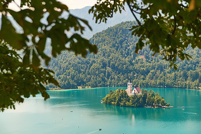 Hike through the hills surrounding Lake Bled