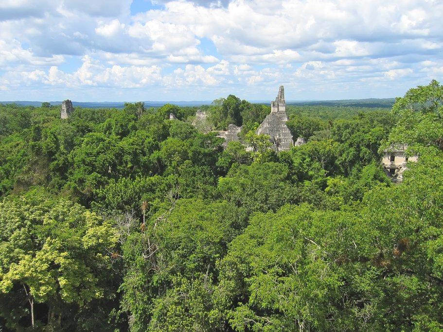 Ancient Mayan ruins of Tikal