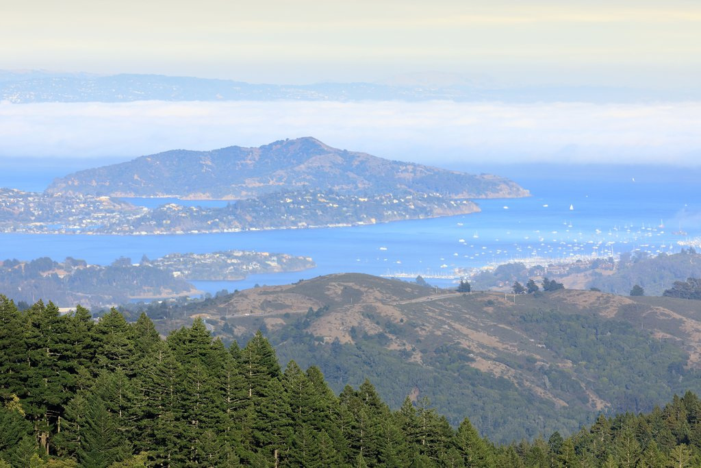 View from Mt Tam