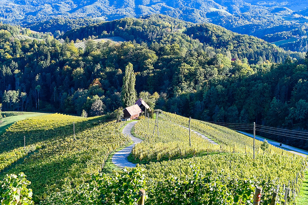Slovenia's green landscapes are a dream for road-trippers