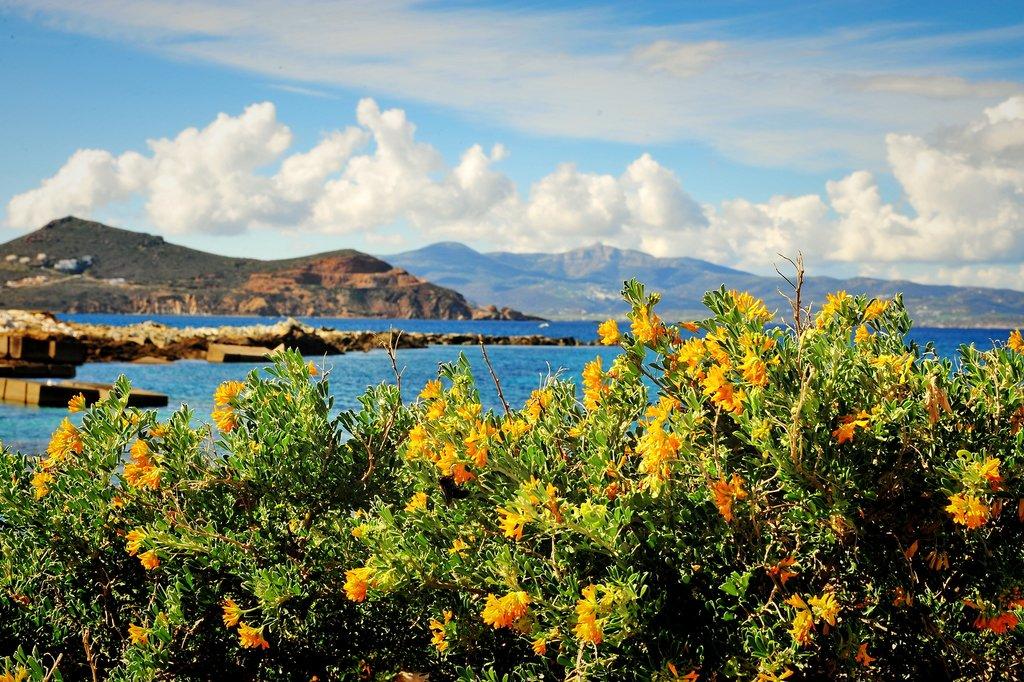 Views over Naxos