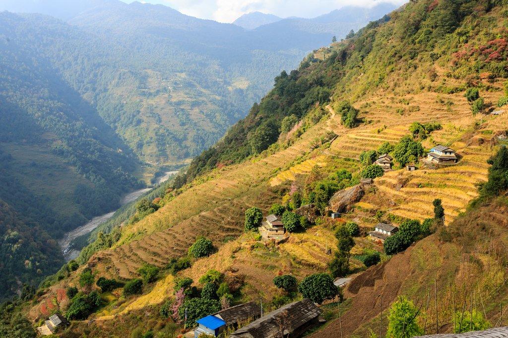 The village of Ghandruk in autumn