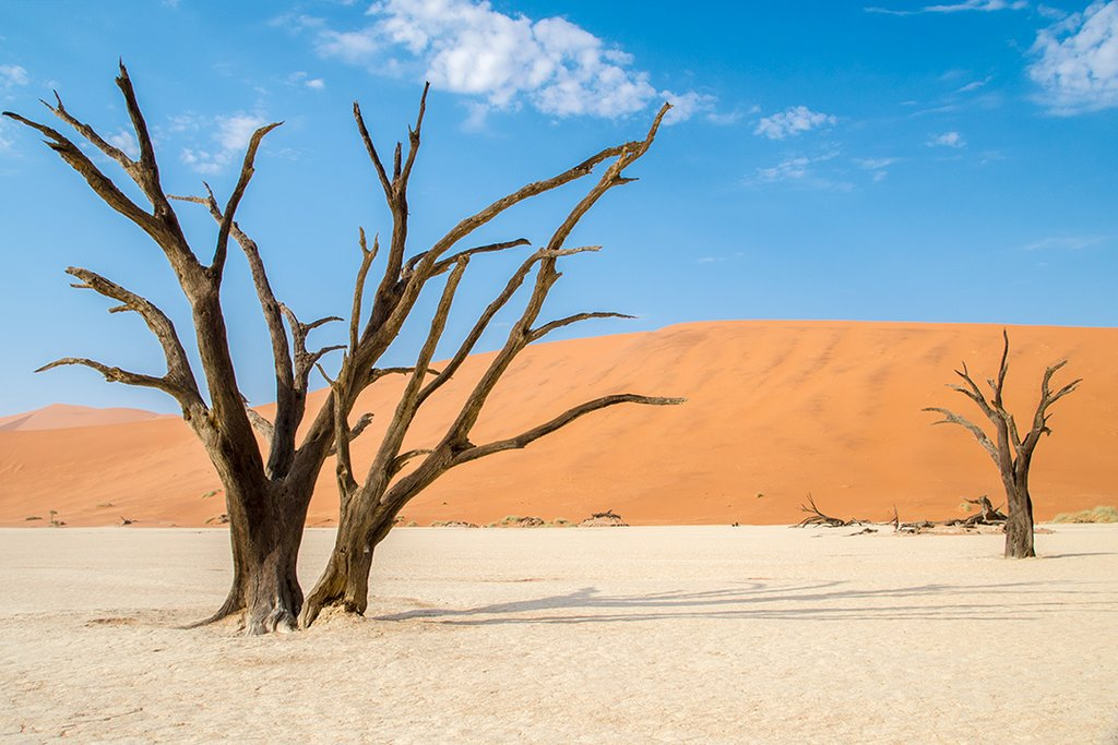 View of the desert in Namibia