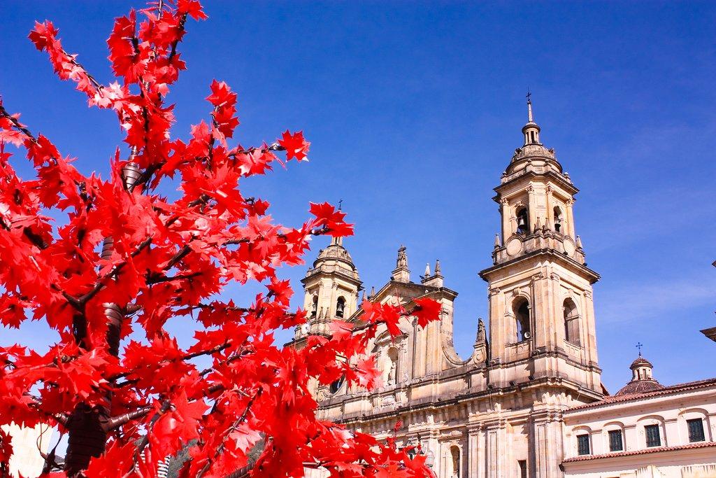 Bogota Cathedral